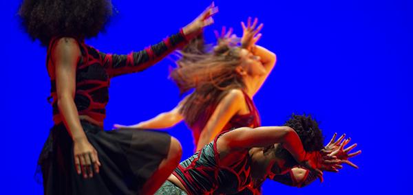 Washington University Dance Theatre: COALESCENCE - Graphic Image