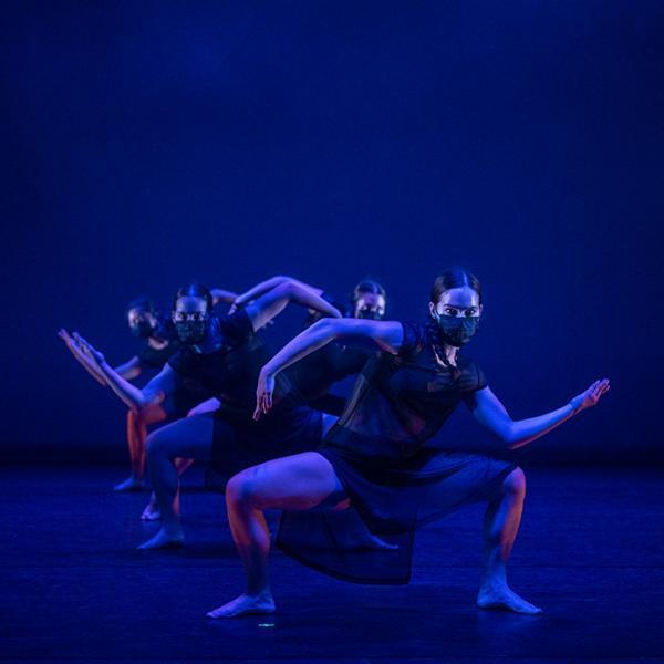 Washington University Dance Collective: REDUX