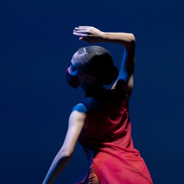 Washington University Dance Collective: Supper Premiering April 30, 2021!