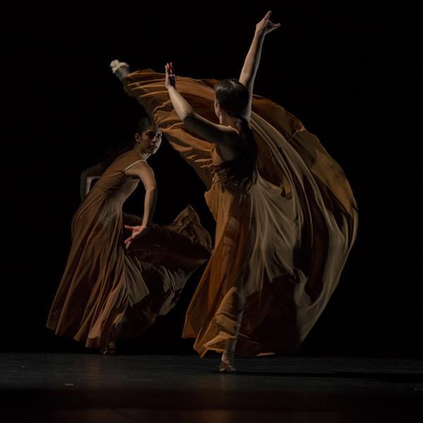 Washington University Dance Theatre: Return