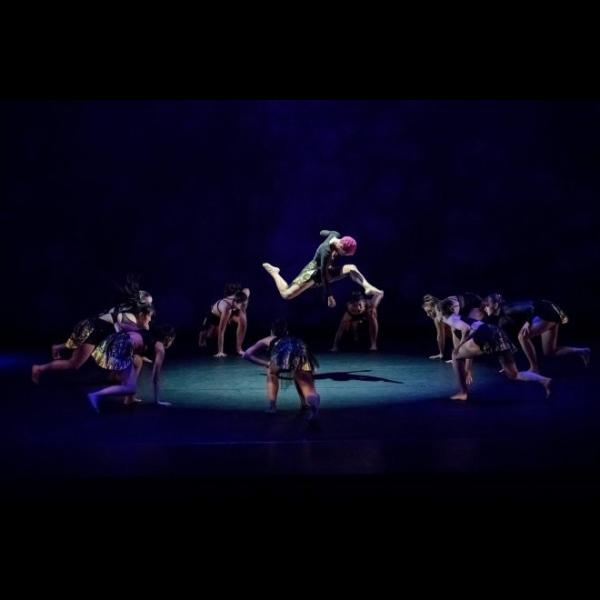 Washington University Dance Collective: Supper