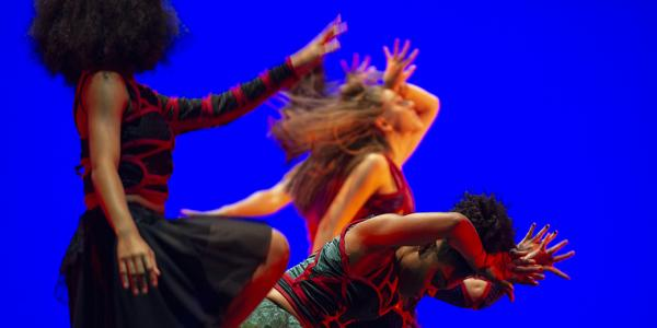 Washington University Dance Theatre: COALESCENCE